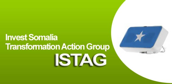 Invest Somalia Transformation Action Group